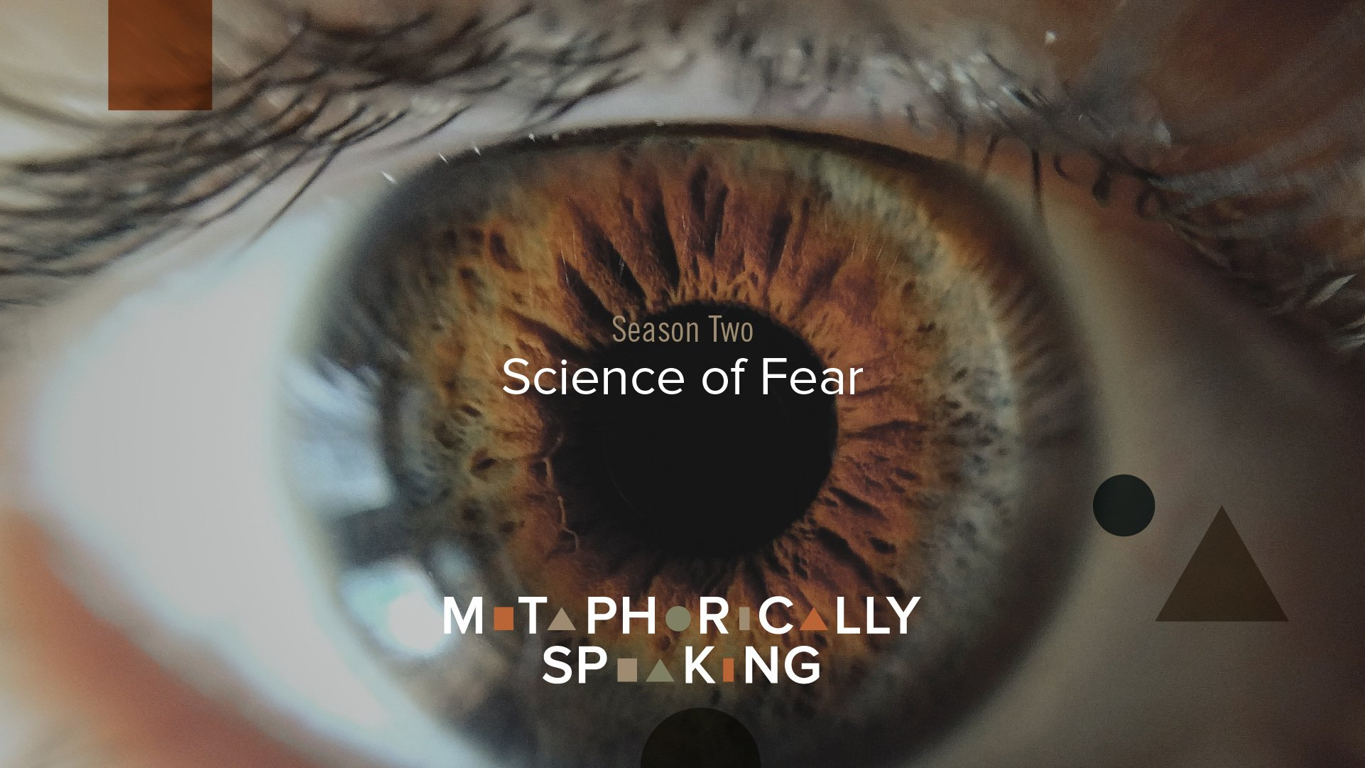 episode 9 - science of fear